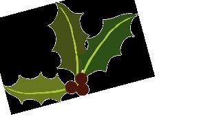 kerst_kalkoen_bestellen