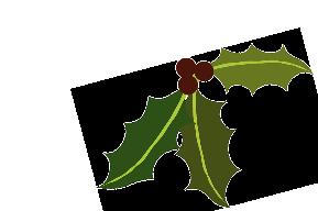 kerst_kalkoen_kopen